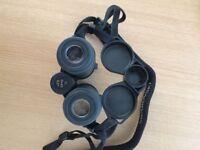 Swarovski Binoculars 10*42 6.3