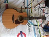 Brunswick Acoustic Guitar