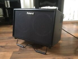 Roland AC 60. Neunaber reverb pedal plus accessories.