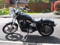 2001 Harley Davidson XL883C Sportster