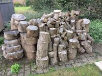 Seasoned assorted hardwood ringed logs