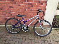"BRITISH EAGLE Girls bike 24"""