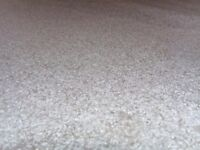 Thick Soft Beige Carpet offcut left from job. Brand new 3,95m x 2,22m total of 8,76m2