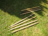 Cricket stumps 3 of one size (58cm) and 4 taller(68cm) collect CR8 ASAP