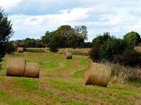 Free Hay Bales