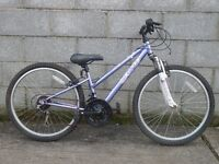violet bike 24'' apollo