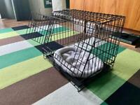 Small dog / animal travel crate