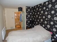 Fabulous Double Bedroom with En-suite in Modern Flat - Free Fitness Suit