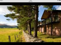 Christmas in Scotland, Luxury Lodge available for 7 nights from 23 Dec