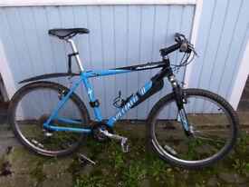 """19"""" Mens Specialized Rockhopper Mountian Bike"""