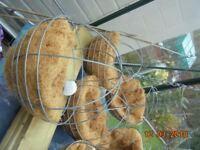 Six 30 cm Spere Hanging Baskets New