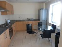 Professional/student Luxury furnished apartment in the City Centre
