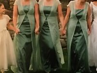3 x Dusky Green Bridesmaids Dresses with Pale Green Chiffon Cape