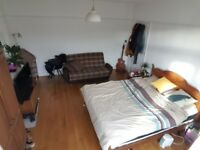 Big Double Room in House with Garden & Lounge!