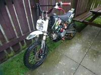 Looking for a pitbike/dirtbike