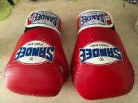 SANDEE 12oz BOXING GLOVES. USED TWICE.