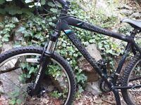"21"" Landrover Zamora Mountain Bike. Great Condition"