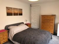 Large double room for rent (18 sq metres)