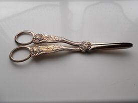Antique silver plated grape scissors