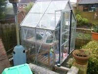 Greenhouse 6 x 4
