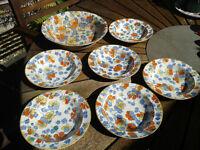 Barker Bros china.Large bowl and 6 dishes. Nasturtium Range.Meirworks Longton . 1912-1930