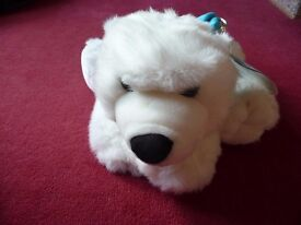 Beautiful white arctic soft bear