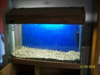 90 ltr fish tank with accessories