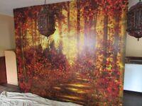 Time Served Painter / Decorator / Wallpaperer Aberdeenshire Turriff Banff Inverurie Aberdeen