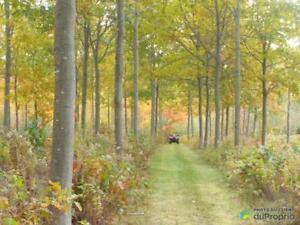 195 000$ - Terre à bois à vendre à Cap-St-Ignace