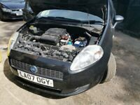 Used Fiat punto for sale in Buckinghamshire | Used Cars