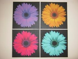 Set of 4 Daisy Wall Canvases