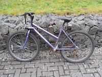 Second-hand mountain bike, in good condition, including very decent bike lock.