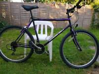 Retro Diamondback Bike MTB