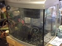 several fish tanks and some accessories