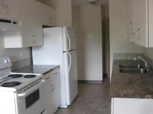 *INCENTIVES* 1 Bdrm Suite Across from Millbourne Mall ~ 195
