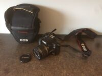 CANON 1000D with 18-55mm lens.