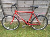 Red Sabre 21 Inch 18 Speed Adult Mountain Bike
