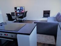 Spacious 2 Bedroom Appartment Holiday let in Pimlico