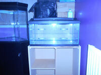 2FT TANK AND CABINET