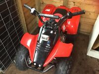 Kids quad bike Kazuma 50cc petrol electric start