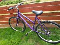 Bicycle Raleigh vixen