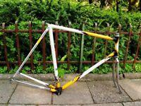 Vintage Campagnolo Eddy Merckx Concorde Frame 59 cm