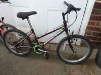 "Girls Mountain Bike , Falcon - Oasis , 20""- age 8-12, Good working order"