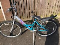 Raleigh Ladies mountain bike very tidy