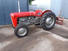 Massey Ferguson 35 4 cylinder in immaculate condition