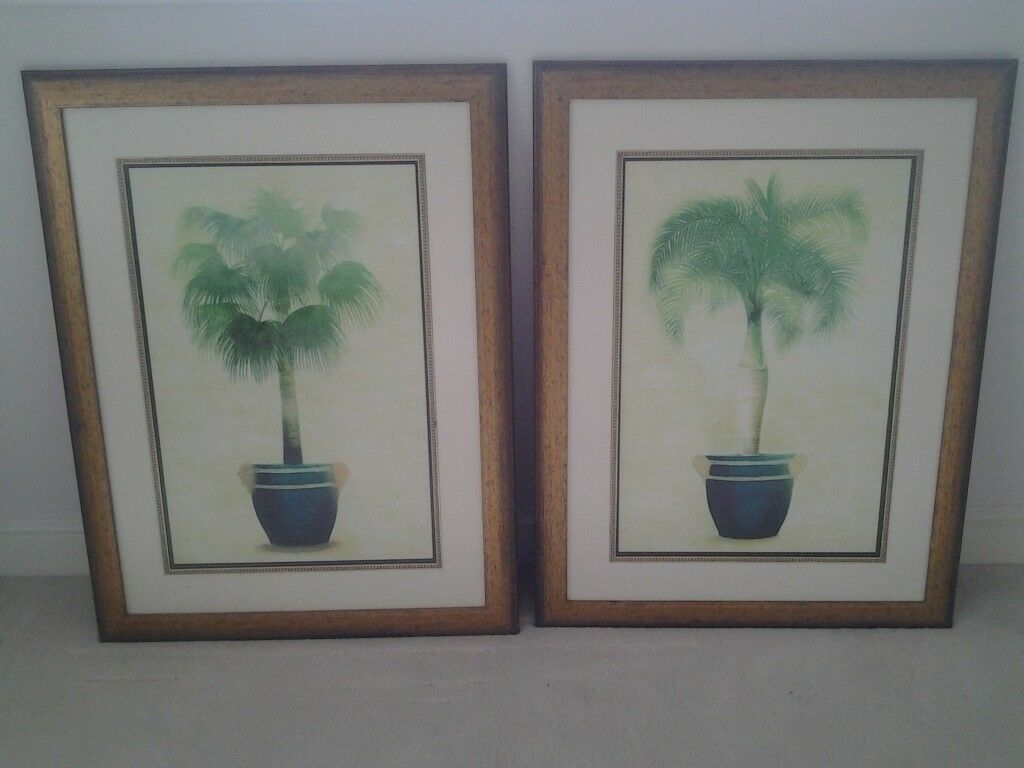 Pair of Large framed Palm Tree Prints