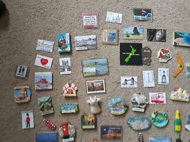 60 FRIDGE MAGNETS