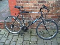 "Adult Mountain Bike Townsend Mercury large 21"""