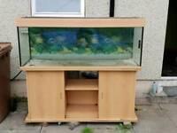500ltr Fish Tank
