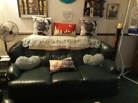 Green Leather Settee and Arm Chair in good condition